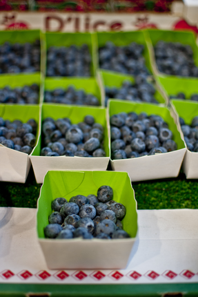 Parisian Blueberries