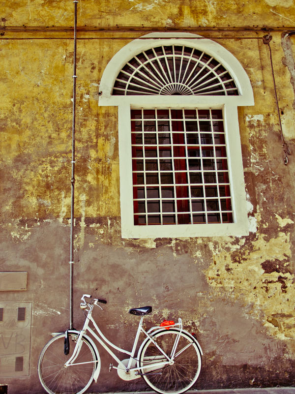 Florentine Bicycle on Wall