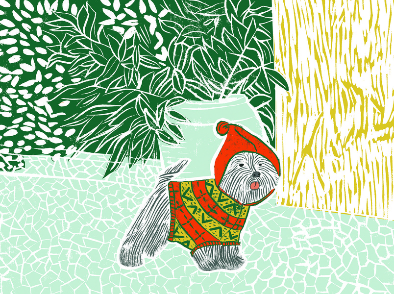 Dressed Dog in Red and Green