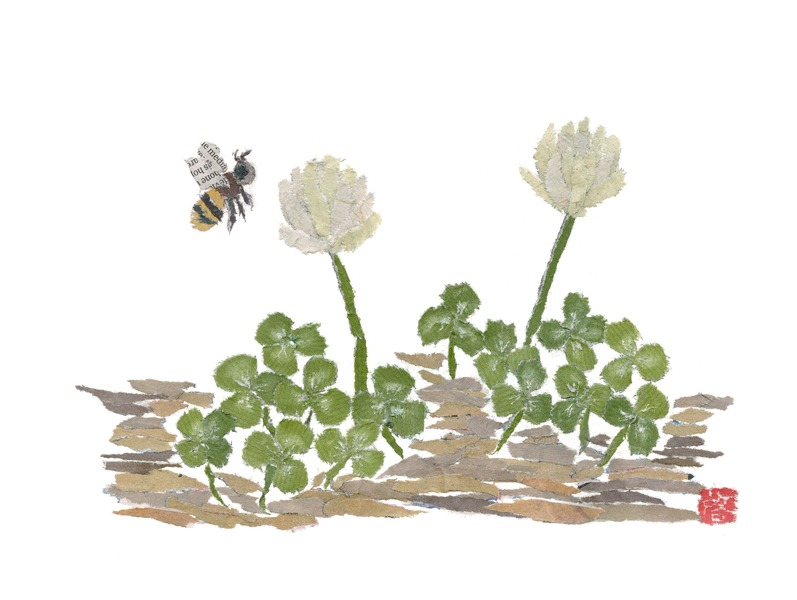 Honey Bee And Clovers