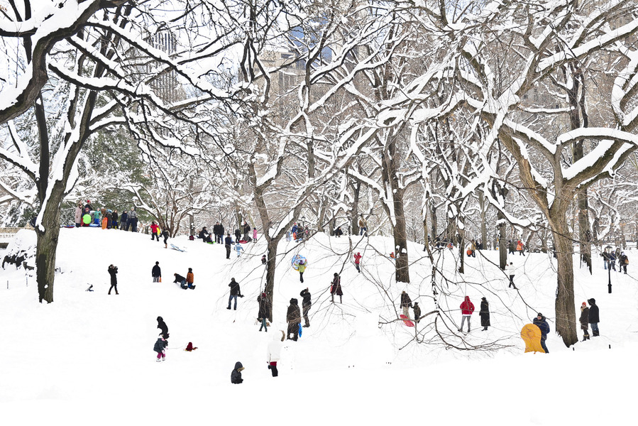 Central Park with Snow and People