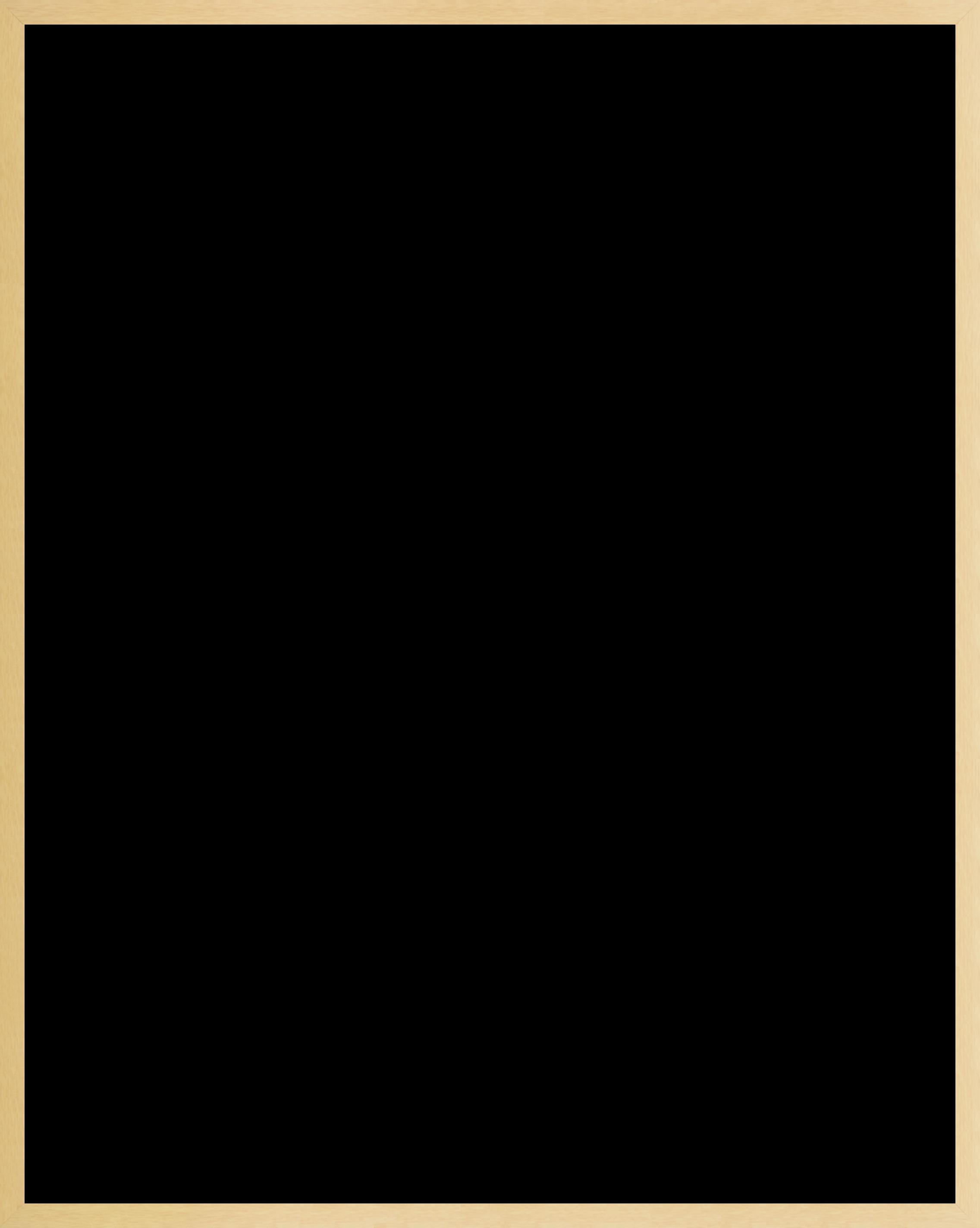 1495-1426664169