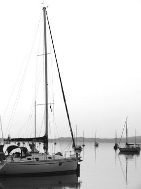 Harbor Morning
