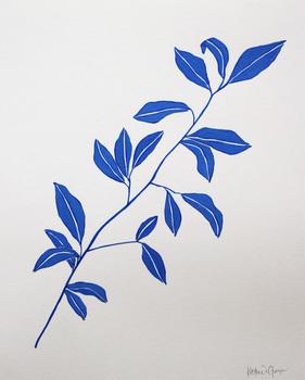 Yves Botanical