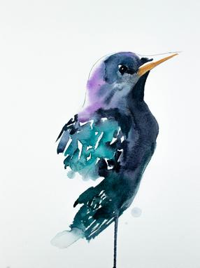 Starling No. 2