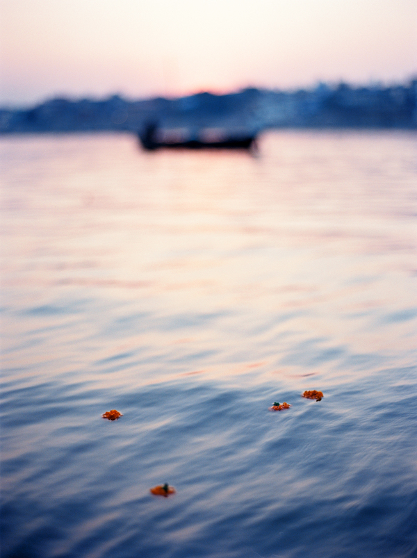 Marigolds On The Ganges By Andrew Jacona Artfully Walls