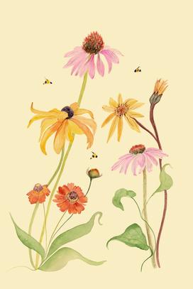 Flowers & Bees
