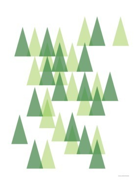 Trees of Lake Tahoe
