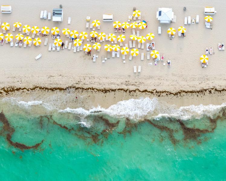 Yellow Umbrellas I