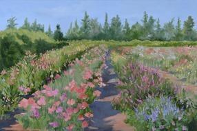 Sep's Flower Field