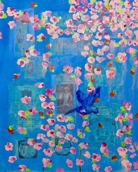 Cornflower Bluebird