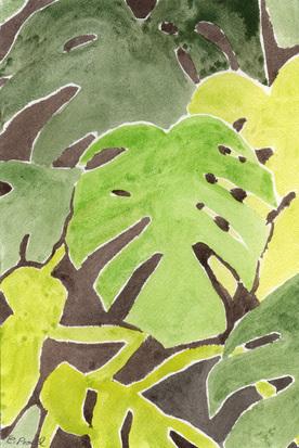 Garden Fronds