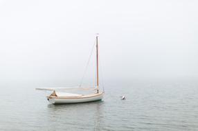 Sailboat II *Reviewing