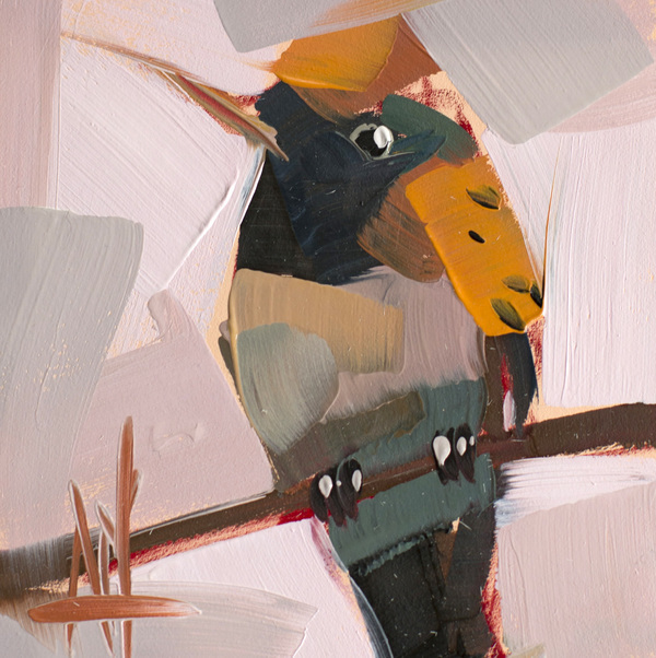 Hummingbird no. 53