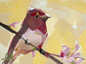 Rose Finch no. 15
