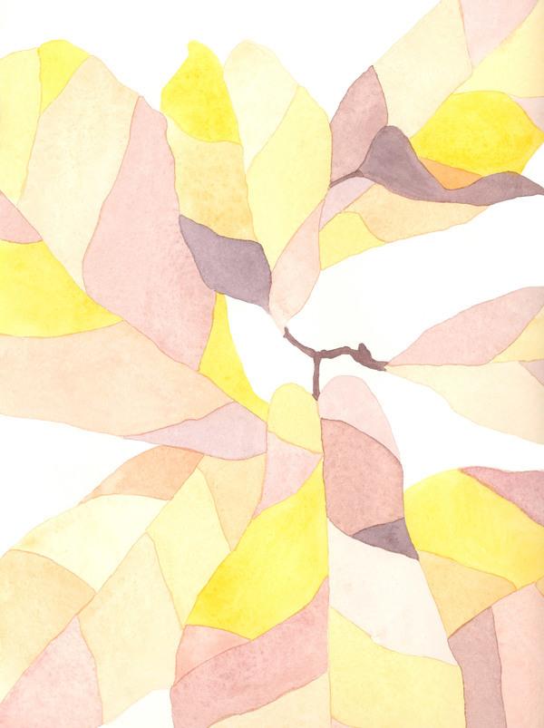 Technicolor Fiddle Leaf Fig