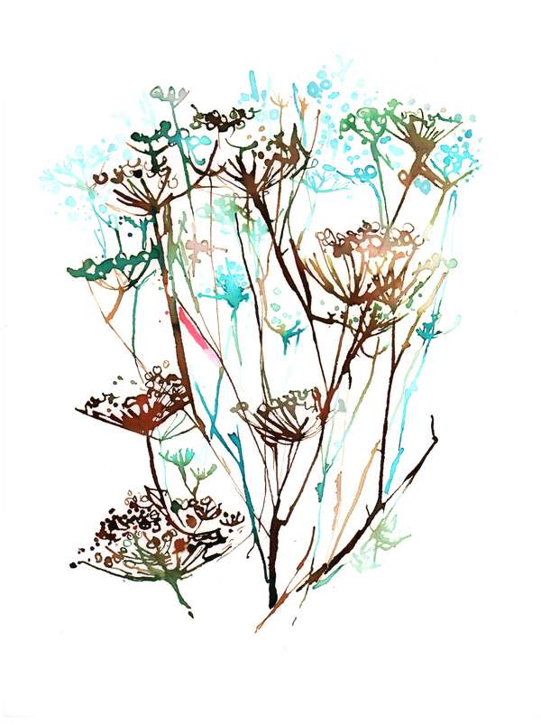 Queen Lace Study 1