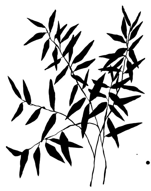 Thin Branch