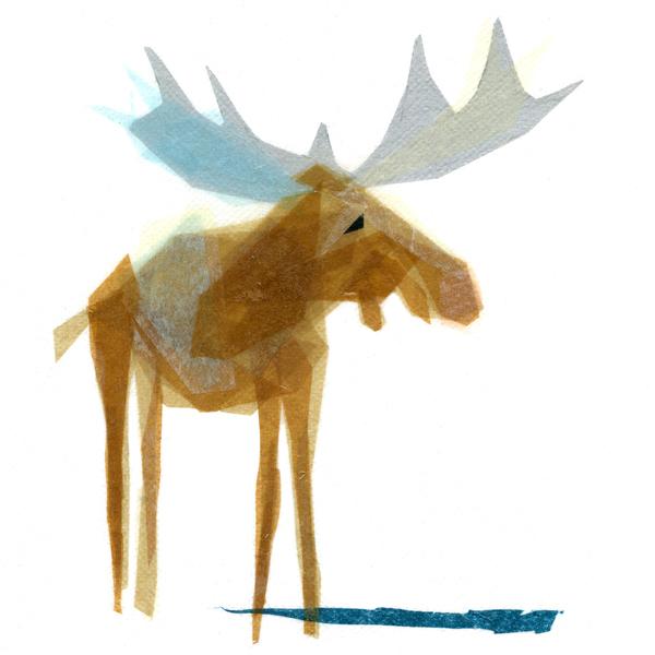 Heathcliff Moose