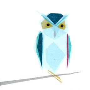 Omar Owl