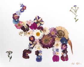 Pressed Flower Elephant