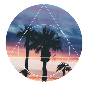 Sunset Palms - Geometric Photography