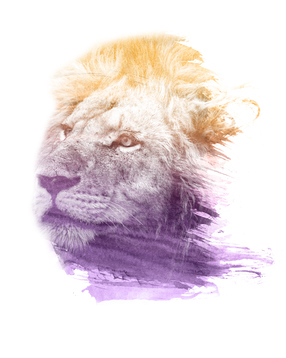 LION SUPERIMPOSED WATERCOLOR