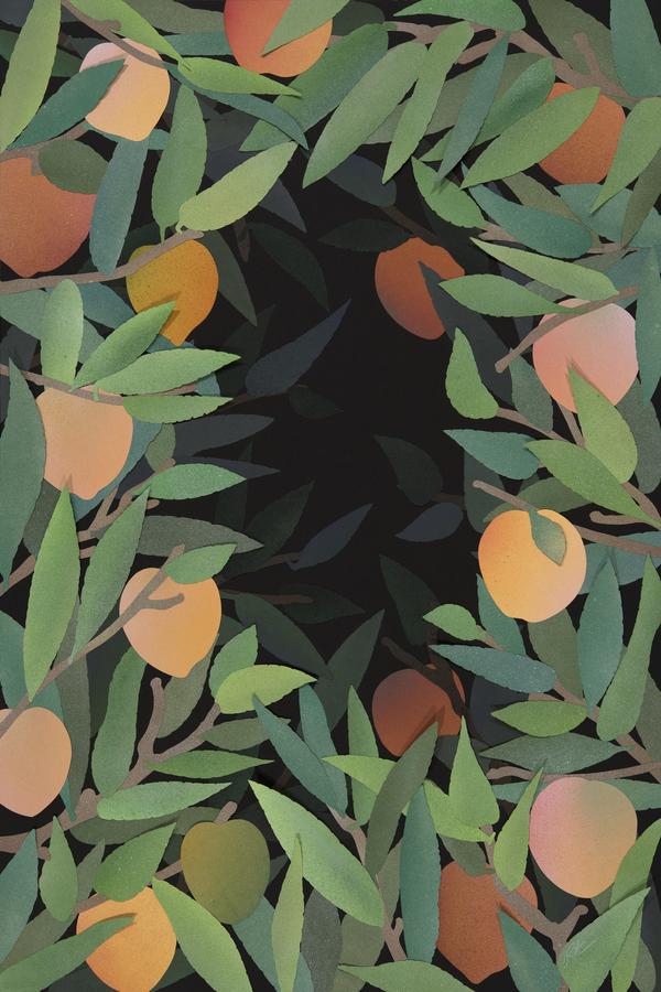 Peach Tree At Night By Rankin Willard Artfully Walls